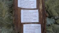 Umanista per studi e per indole, santiario per professione, Matteo Rimi scrive per necessità, per fissare su carta i suoi pensieri raminghi che sembrano vagare in un limbo tra il […]